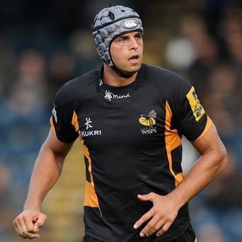 Marco Wentzel is enjoying life at in-form Wasps this season