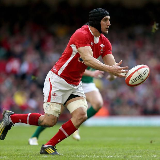 Sam Warburton is back in the Wales side against Scotland