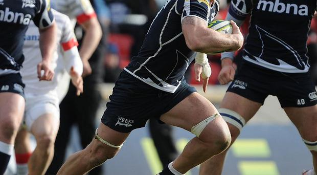 Andy Powell, centre, has been linked with a move to Wigan