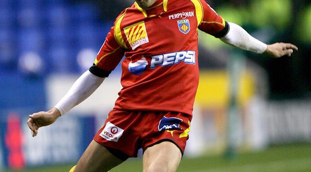 Jerome Porical helped Perpignan into the Amlin Challenge Cup final