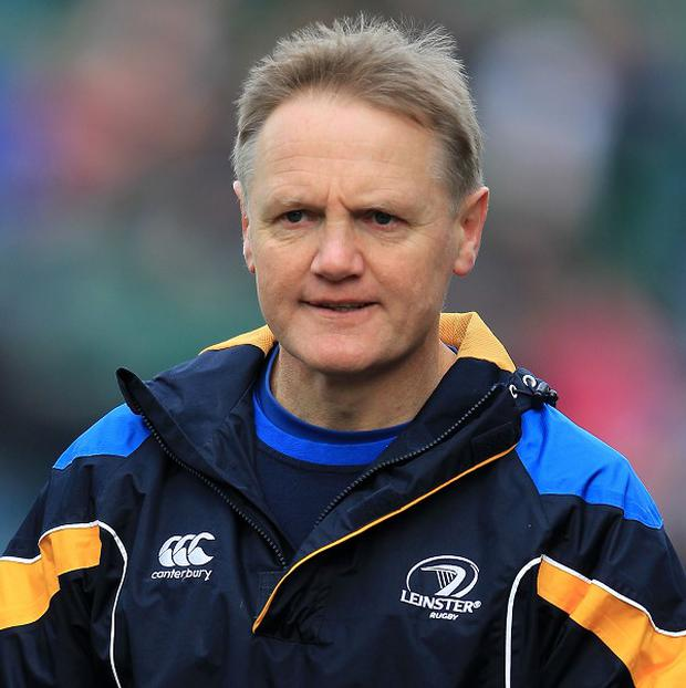 Joe Schmidt is relishing the challenge of taking one of world rugby's biggest jobs