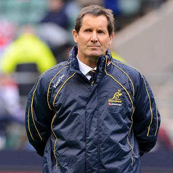 Robbie Deans is using Wales' win against England in the Six Nations as a reference point as he prepares his Wallabies for the Lions