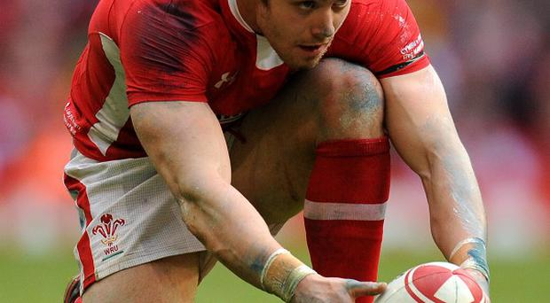 Leigh Halfpenny is hungry for success down under this summer after enduring a frustrating tour four years ago in South Africa