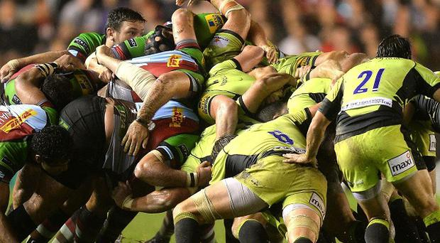 Northampton and Harlequins are two of the clubs in Heineken Cup action this season.