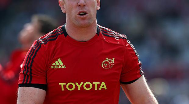 Paul O'Connell, pictured, helped Munster down rivals Leinster at Thomond Park.