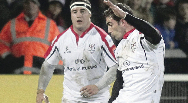 Committed and settled: Ruan Pienaar turned down Toulon to sign for three more years with Ulster