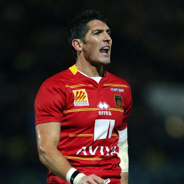 James Hook hopes for Wales return