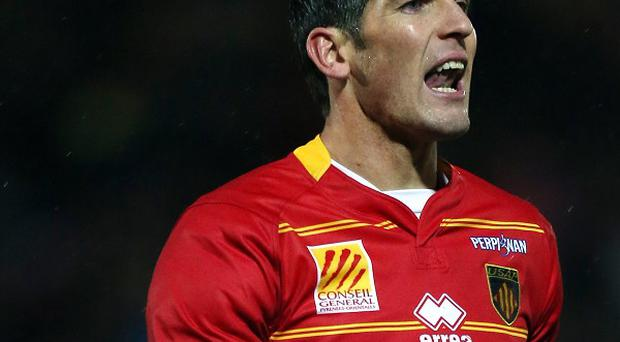 James Hook must rise to the challenge set by Wales coach Warren Gatland.