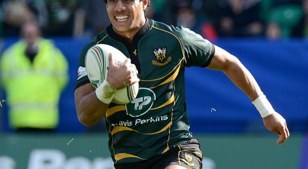 Ken Pisi scored a pair of tries for Northampton