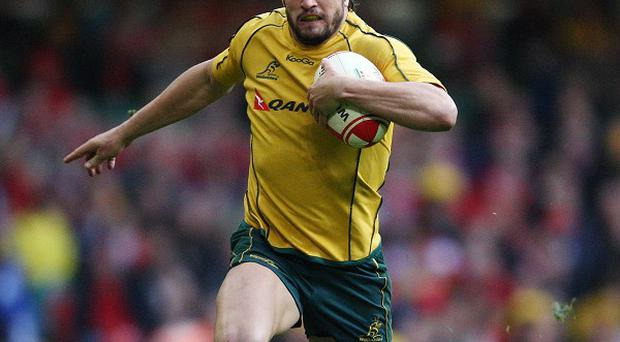 Adam Ashley-Cooper, one of six Australia players suspended by coach Ewen McKenzie over a late night drinking session.