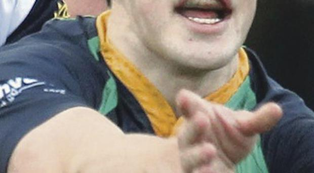 Key role: Harry McAleese will offer a lot to Ballynahinch