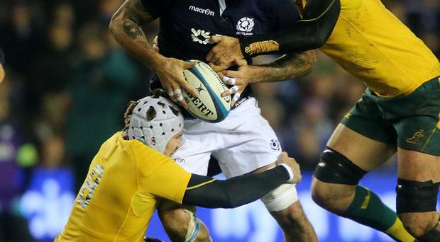 Jim Hamilton felt Scotland were 'significantly better' than against South Africa