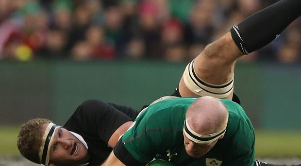 Battering ram: Ireland's Paul O'Connell smashed his way through the All Blacks defence on Sunday but it wasn't enough