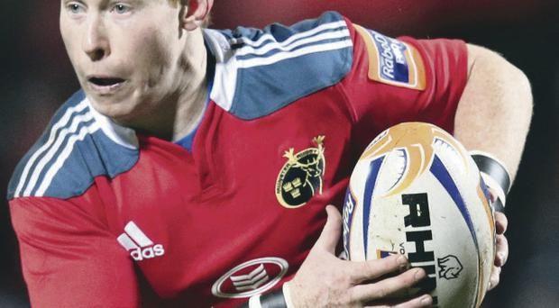 Sher thing: Cathal Sheridan has been capable Munster deputy