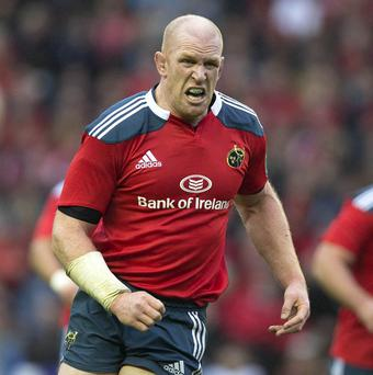 Paul O'Connell has signed a new two-year IRFU contract to stay with Munster