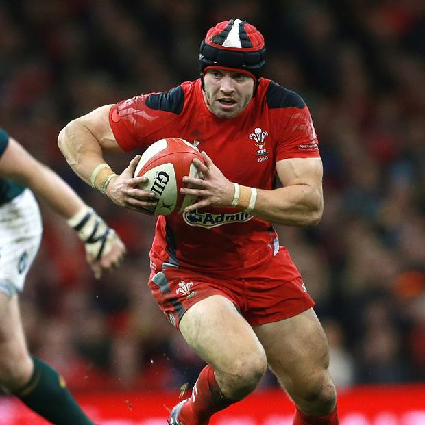 Leigh Halfpenny is fit to play for Toulon