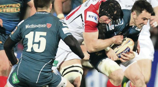 Surging Stevie: After impressing from the bench on his comeback from injury against the Scarlets, Stephen Ferris starts tonight