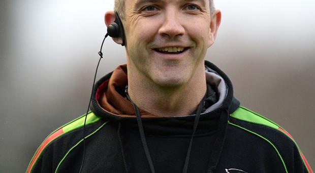 Harlequins' director of rugby Conor O'Shea, pictured, is focused on winning the Amlin Challenge Cup