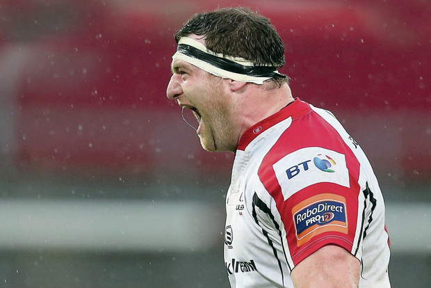Munster mash: Neil McComb shows his delight after Ulster upset the odds in Limerick last weekend