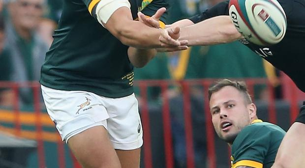 Young star: Handre Pollard is earning plaudits for the Boks