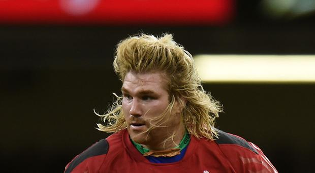 Wales' Richard Hibbard came on as a replacement
