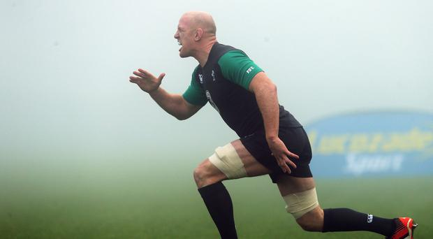 Ireland captain Paul O'Connell has played down speculation linking him with a move to France