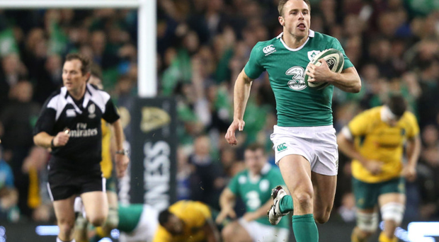 Try stopping him: Tommy Bowe races away for a fine try against Australia on Saturday