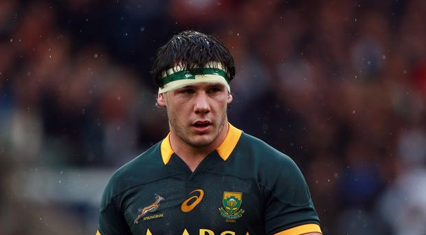 South Africa's Marcell Coetzee scored two tries to help the Sharks down the Cheetahs