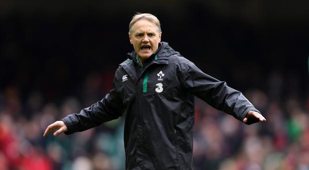 Joe Schmidt, pictured, has admitted Ireland's 23-16 defeat to Wales will drive him to sleepless nights