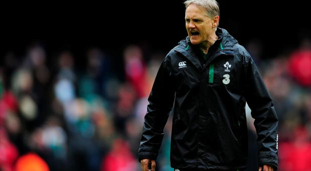 What's wrong with you? Ireland coach Joe Schmidt shows his frustration during the Six Nations match against Wales