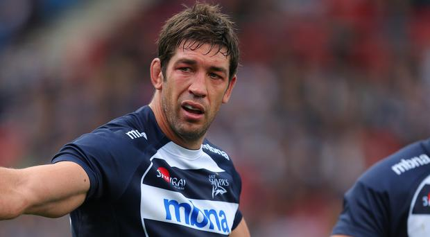 Sale Sharks lock Nathan Hines has urged his side not to get too far ahead of themselves