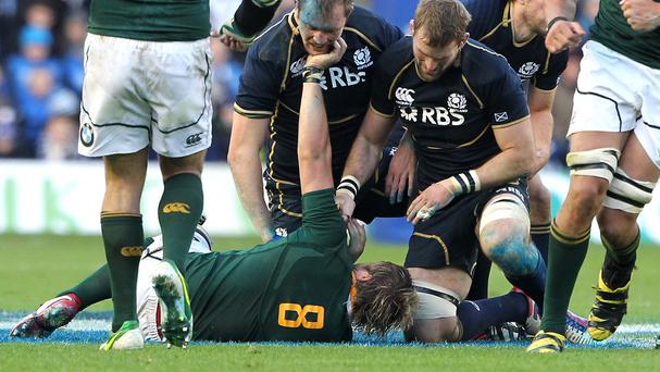 South Africa number eight Duane Vermuelen, pictured here against Scotland, should be fit for the World Cup