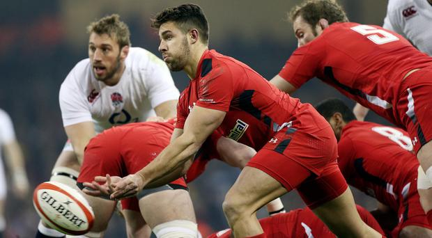 Scrum-half Rhys Webb is set to be a key player for Wales at the World Cup