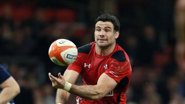 Mike Phillips has a big part to play in Wales' World Cup campaign after being called up to replace the injured Rhys Webb, says head coach Warren Gatland.