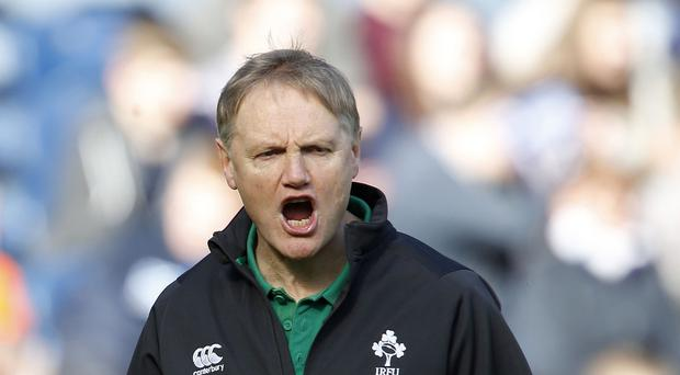 Joe Schmidt, pictured, has been backed to stick to his gameplan guns in Ireland's World Cup campaign