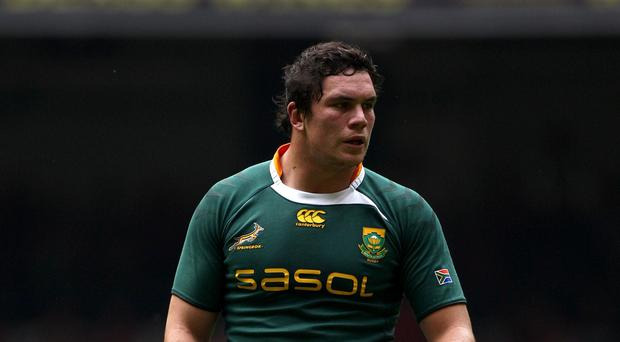 Bath flanker Francois Louw will feature in the most experienced South Africa team in history on Saturday