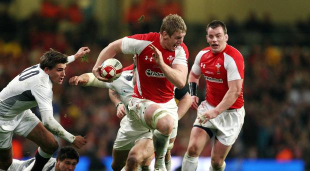 Wasps lock Bradley Davies is relishing being part of Wales' World Cup campaign