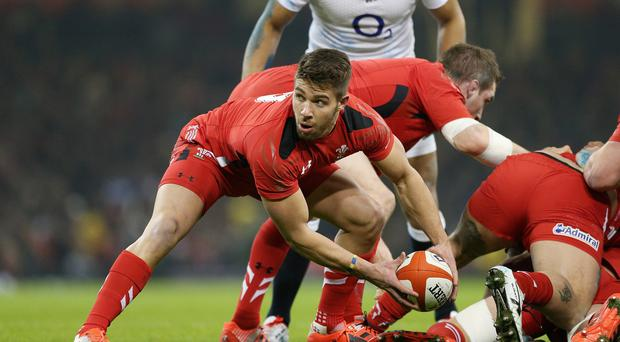 Wales scrum-half Rhys Webb faces a long spell on the sidelines after suffering a serious foot injury