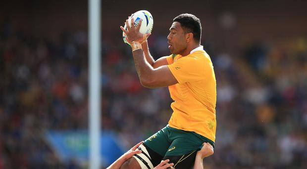 Australia's Wycliff Palu will play no further part in the World Cup