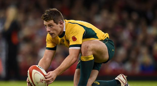 Bernard Foley kicked 18 points when Australia claimed a 10th successive victory over Wales last November