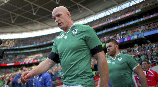 Paul O'Connell, front, has been tipped to fight back from injury and excel at Toulon