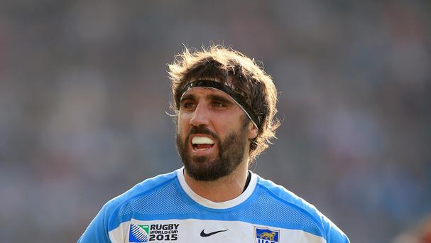 Juan Martin Fernandez Lobbe, pictured, has insisted Argentina will not heap all their pressure on Johnny Sexton against Ireland