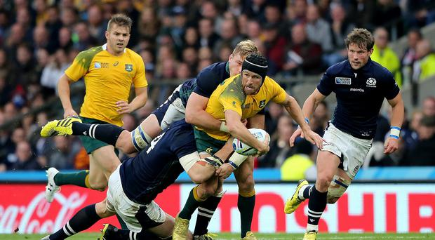 Matt Giteau, centre, celebrated his 100th cap for Australia with a man of the match performance on Sunday
