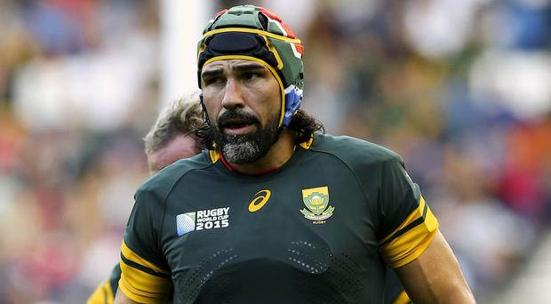 Victor Matfield insists South Africa can still win the World Cup despite facing favourites New Zealand in the semi-finals