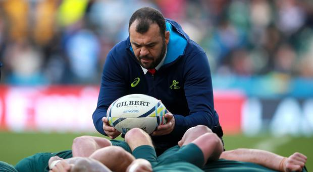 Michael Cheika believes Australia need 'something special' to beat the All Blacks in the World Cup final