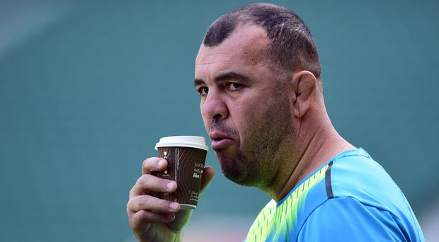 Australia boss Michael Cheika, pictured, insists New Zealand are hot favourites in Saturday's World Cup final