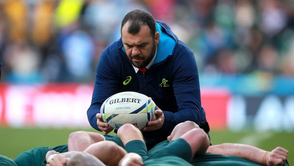 Head coach Michael Cheika says Australia's squad has an assortment of