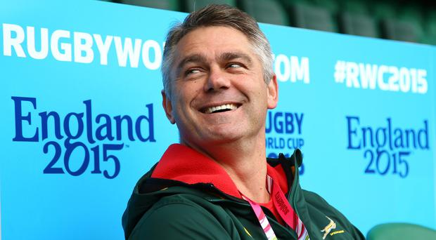 Undecided: Players keen for Heyneke Meyer to continue