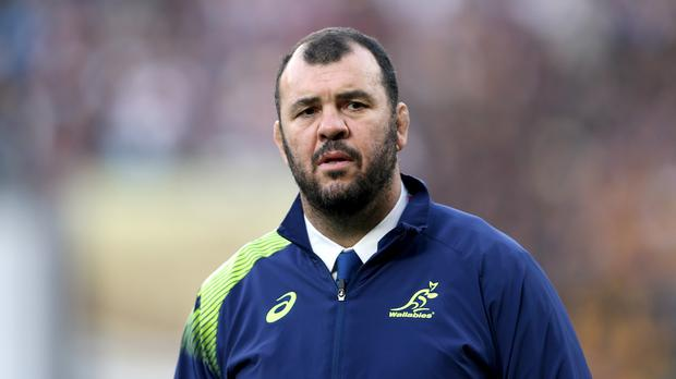 Australia's Michael Cheika, pictured, could be high on the list of candidates to succeed Stuart Lancaster