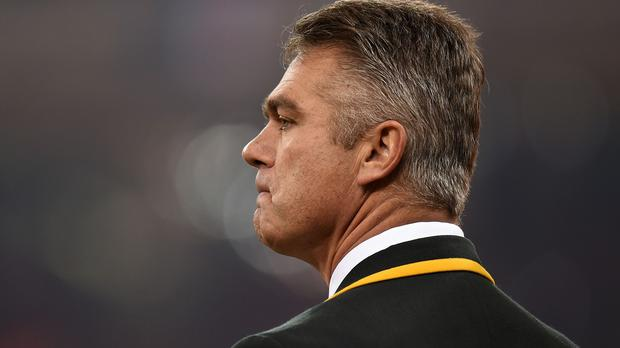 Heyneke Meyer has stepped down as coach of South Africa